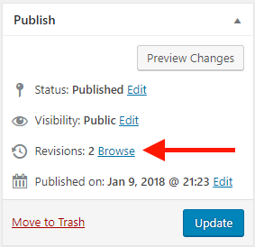 WordPress Revisions counter